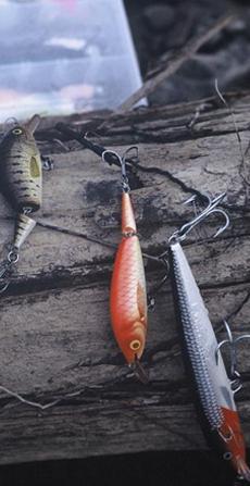 Рыбалка: правила хорошего клева
